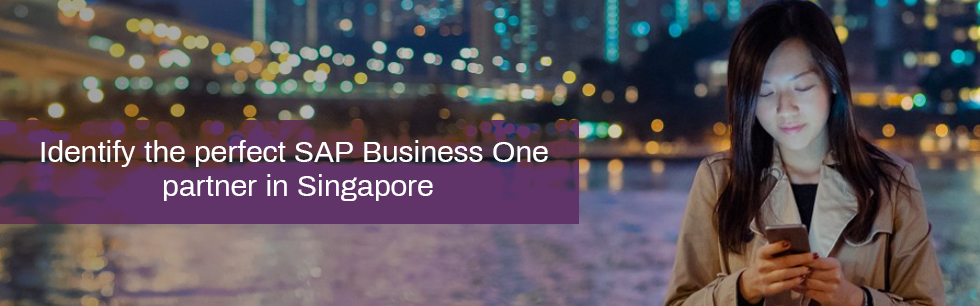 SAP Business One partner in Singapore